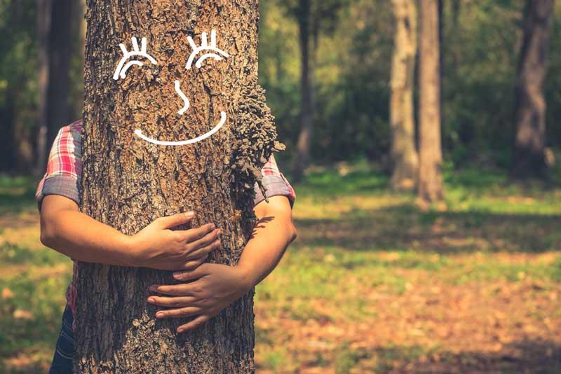 Een boom knuffelen is wellicht iets te overdreven