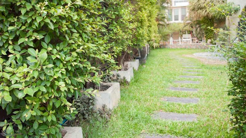 Zelf Tuin Leeghalen : Kosten tuinaanleg welke kosten kan je verwachten?