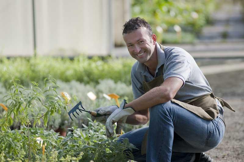Een tuinman zoeken kan gemakkelijk via internet